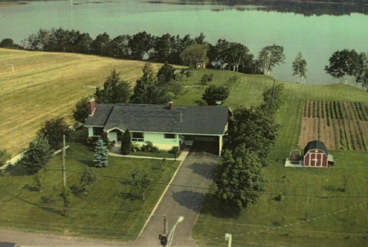 Aerial view of my Grandparents home 1960.