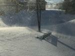 Front Yard - Feb. 1st