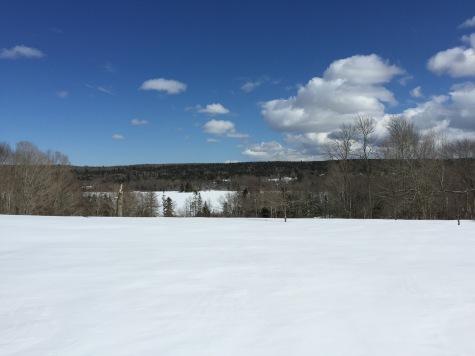Frozen Lake Lawson