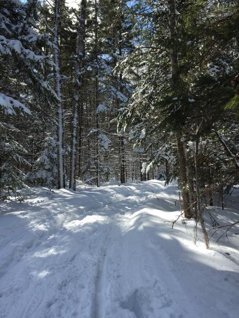 Sleigh Trail