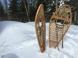 Snow Shoes