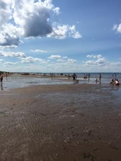 Aboiteau Beach