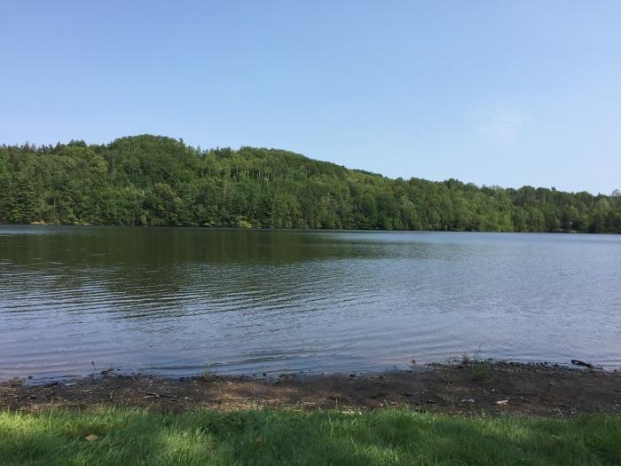 Lumsden's Dam