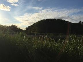Evening Walk at Miners Marsh