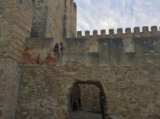 Peeking from the castle wall